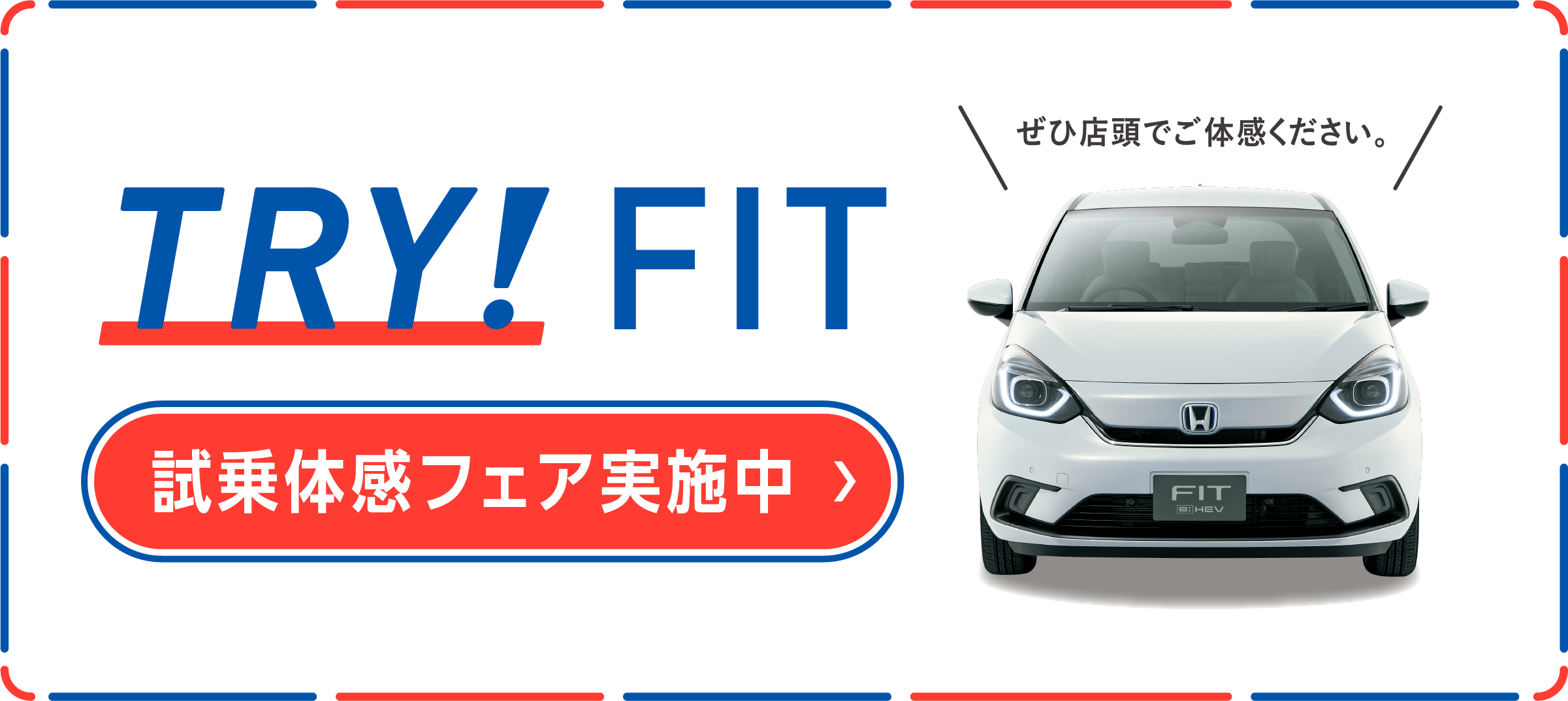 NEW FIT 登場